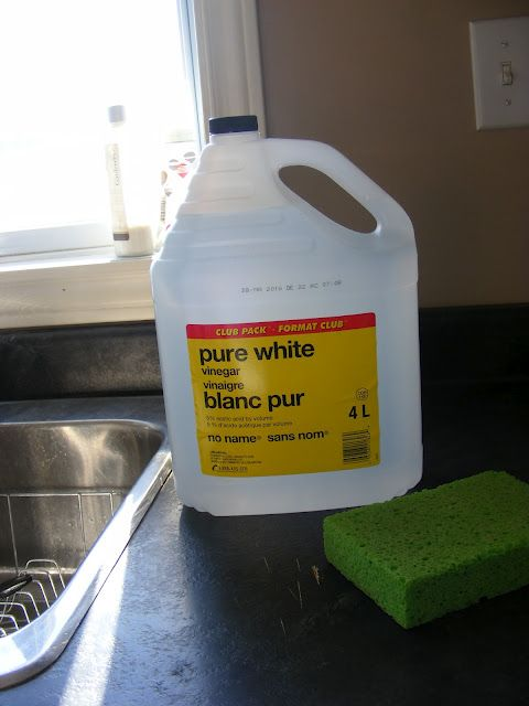8 Things To Start Using Vinegar For Carpet Cleaning