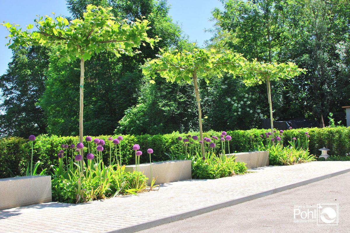 moderne Gartengestaltung Objekt Burghausen Garten