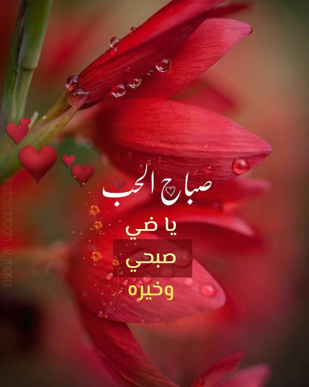 صبح و مساء On Instagram صباح الحب صباح الورد صباحيات صبح صباح صباحو صبح Good Morning Gif Good Morning Images Flowers Morning Images