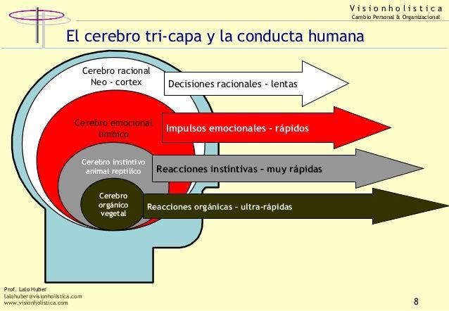... Lalo Huber - Aprendizaje e inteligencia racional -emocional. http://es.slideshare.net/lalohuber/conferencia-aprendizaje-e-inteligencia-racional-emocional-2
