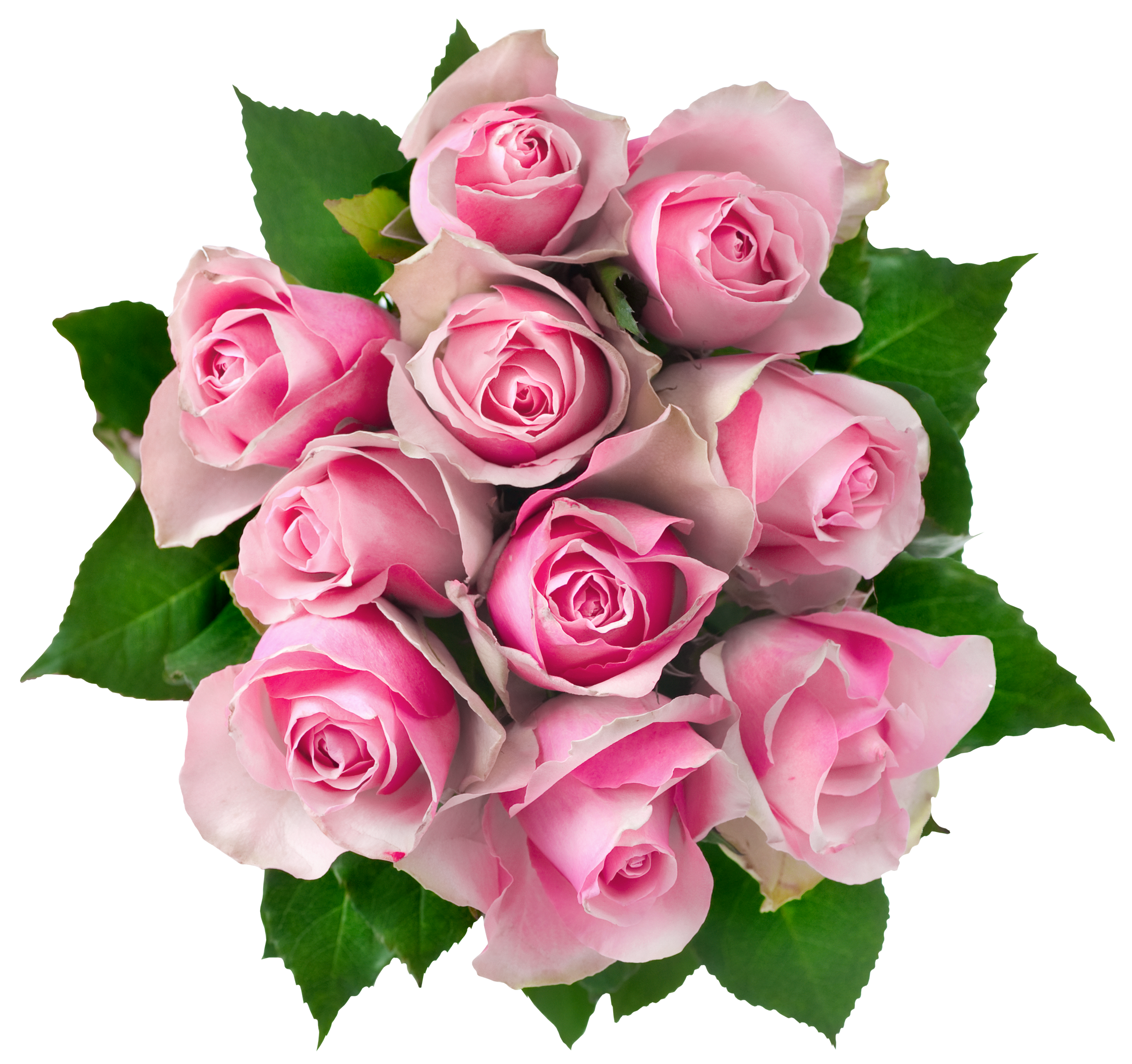 North Hollywood Flower Delivery Flower Bouquet Png Flowers Bouquet Pink Rose Bouquet