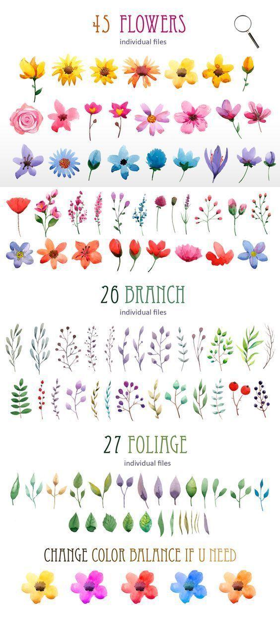Watercolor Ideas Easy Flowers : watercolor, ideas, flowers, Simple, Beginner-Friendly, Watercolor, Ideas, Flower, Painting,, Wreath