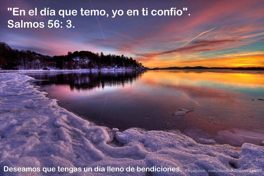 """""""En El Día Que Temo, Yo En Ti Confío"""". Salmos 56: 3"""