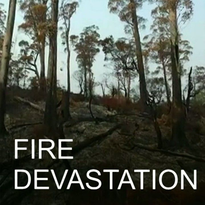 12 FEB: Watch aerial footage of fire-ravaged forests in Tasmania Australia after the island state has driest spring and hottest December on record. An estimated 105000 hectares have burnt so far. For more on forest fires: bbc.in/forestfires #Forestfires #Tasmania #Environment #Australiaweather #Bushfires #Tasmania #Australia @Greenpeace @Wilderness #BBCShorts @BBCNews by bbcnews