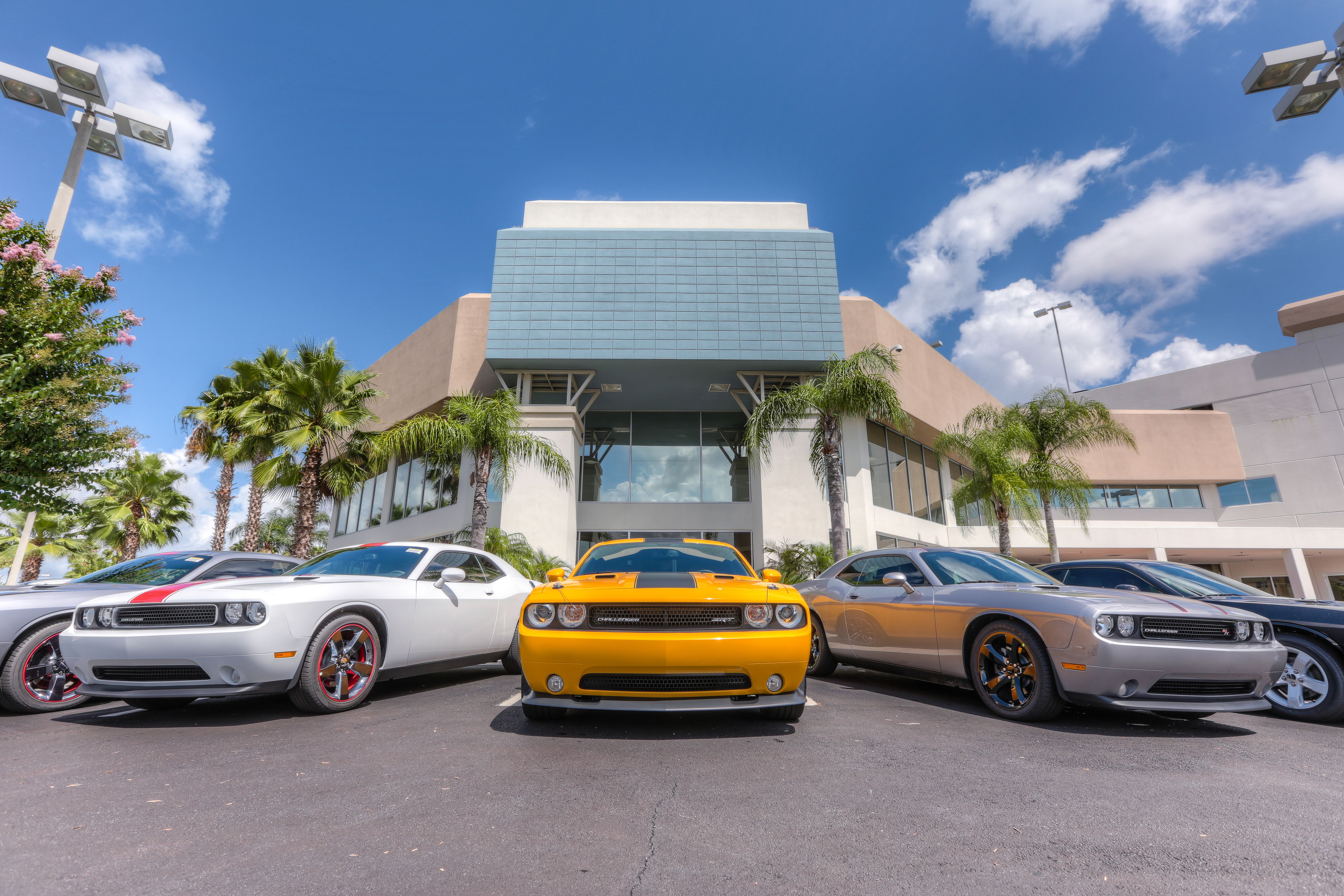 Challengers Are Low And Bold In Front Of Our Dealership You Ll