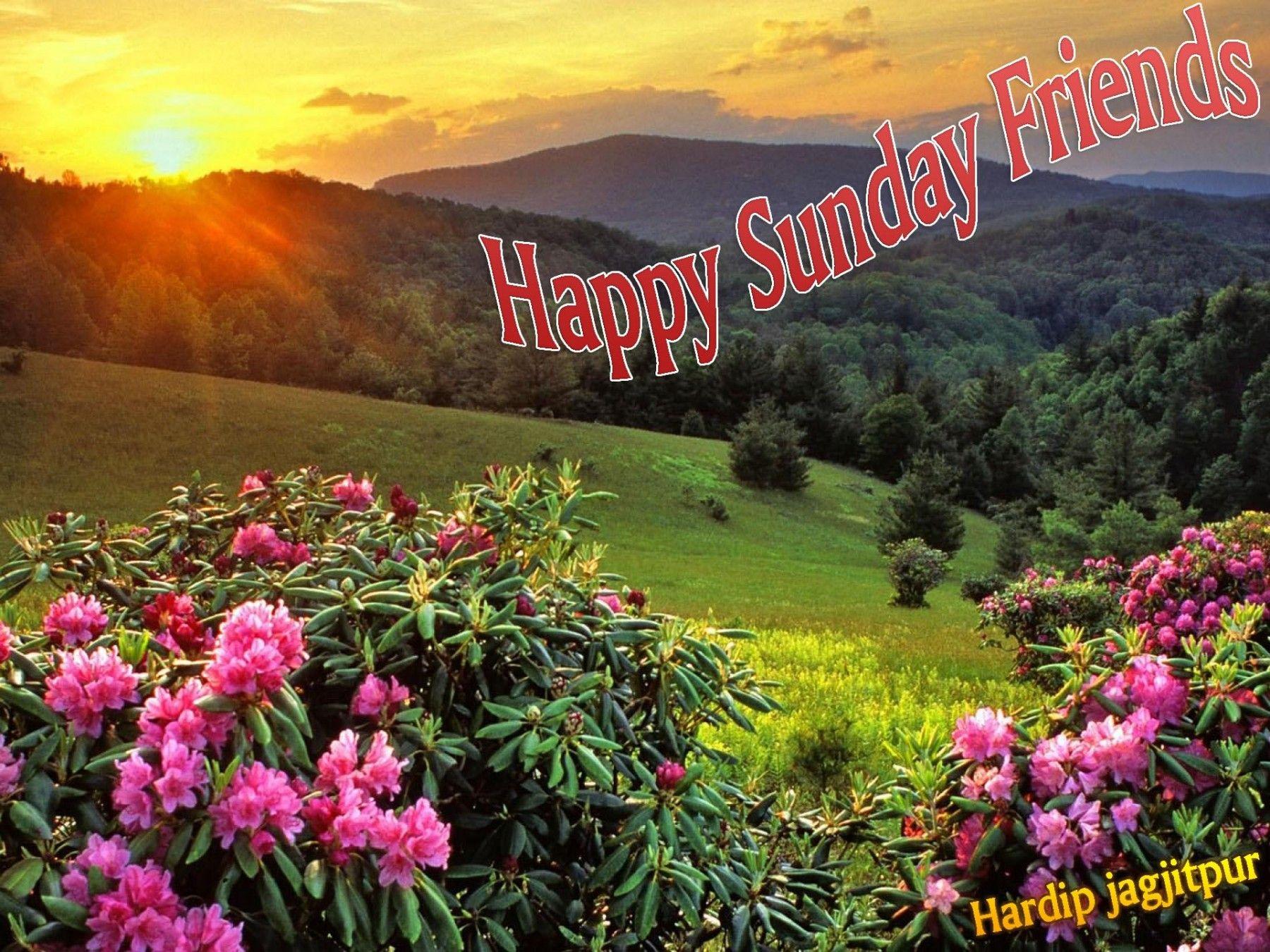 Happy Sunday Friends Scenery Wallpaper Hd Nature Wallpapers Landscape Wallpaper