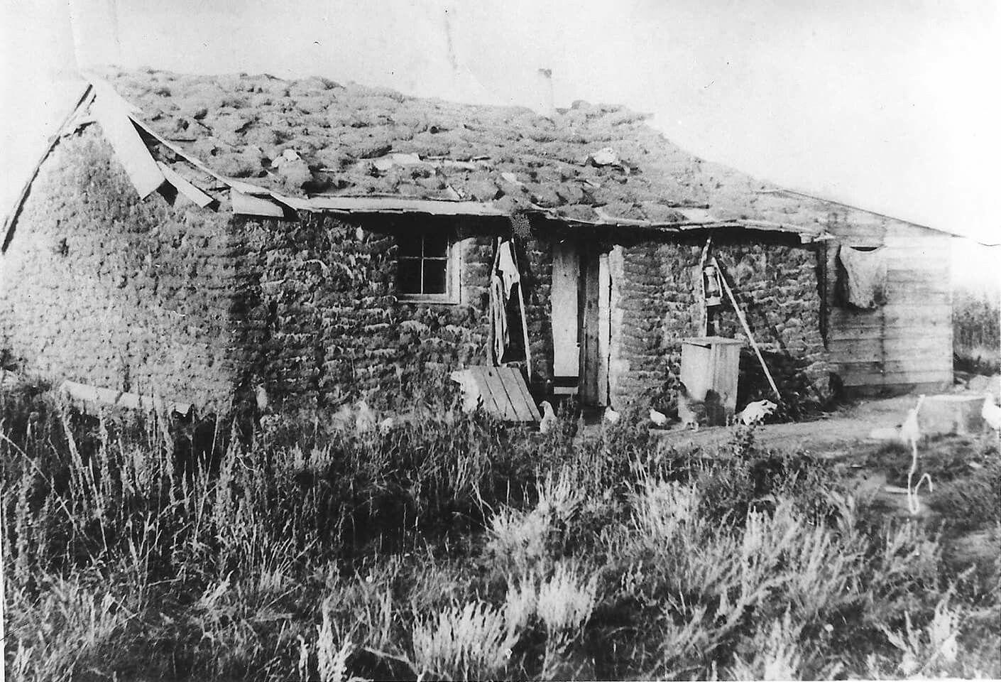 Soddy house near Hamiota, Manitoba 1880s. Vintage Old