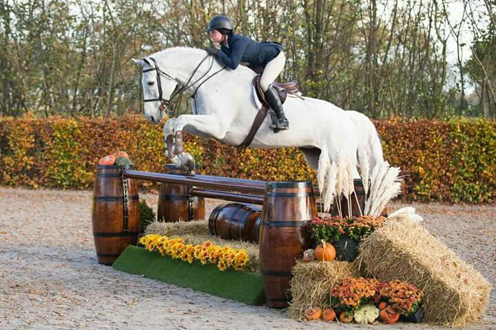 Barrel jump with fall decorations