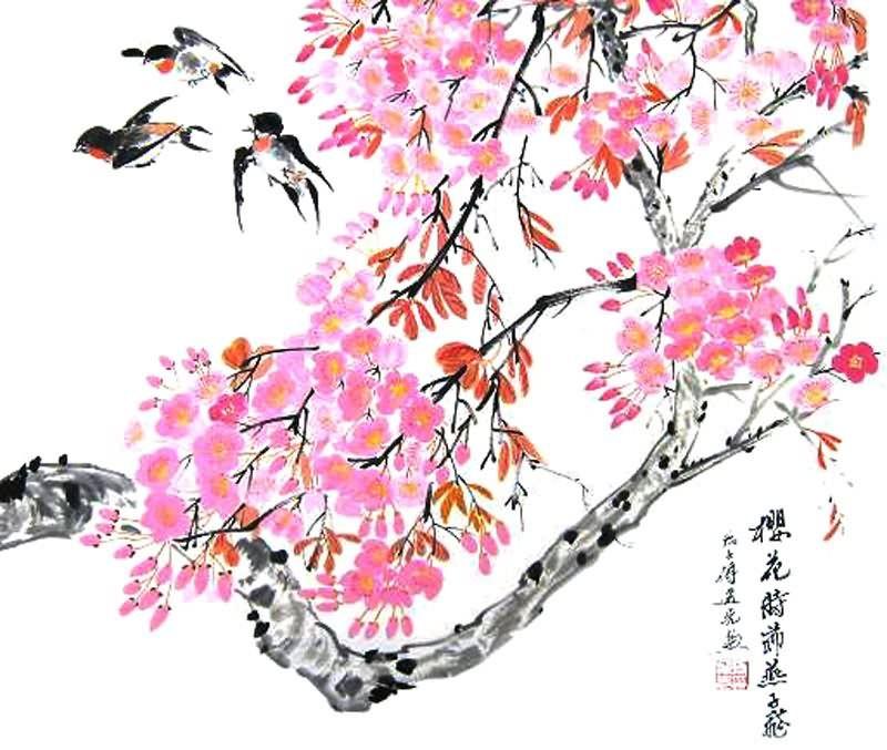 Cherry Blossom Cherry Blossom / Sakura Pinterest