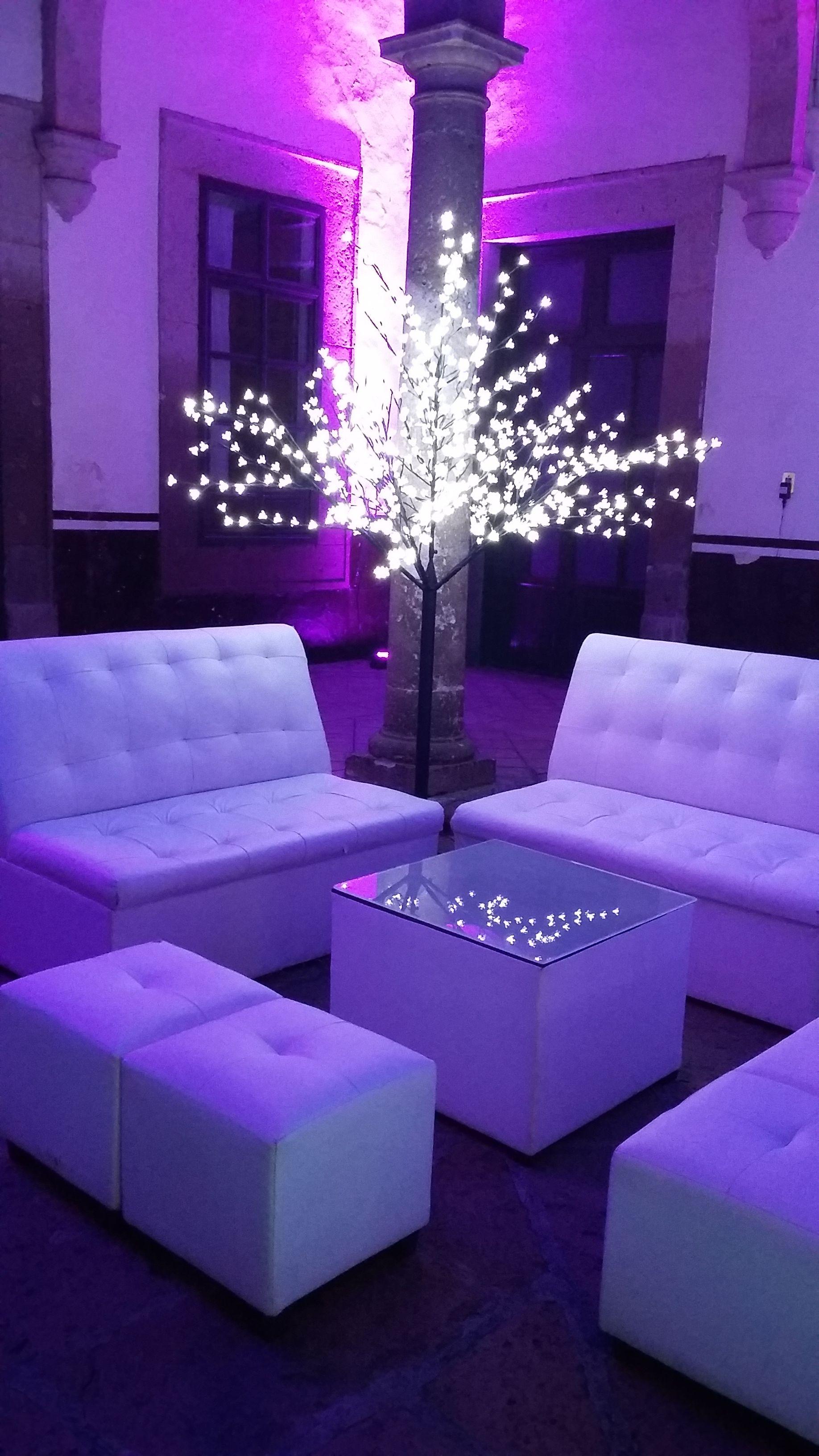 Renta De Salas Lounge Xpoo Music Morelia Mich Salas Lounge Blancas Arbolitos Iluminados De Leds Xpoo Music Morelia Mich Mexico 44 31 Home Home Decor Decor