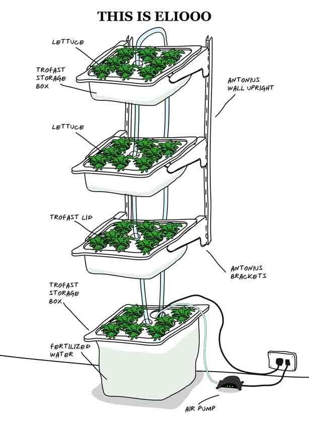 how to build indoor hydroponic gardens using ikea storage boxes urban gardening pinterest. Black Bedroom Furniture Sets. Home Design Ideas