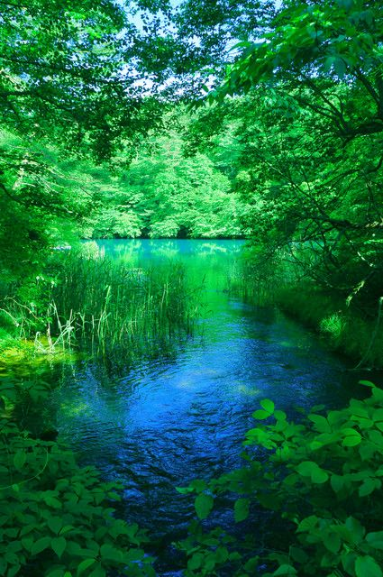 エメラルドグリーンのきれいな湖: なぜこんなに綺麗な青色なんでしょう? 青い沼がたくさんあり