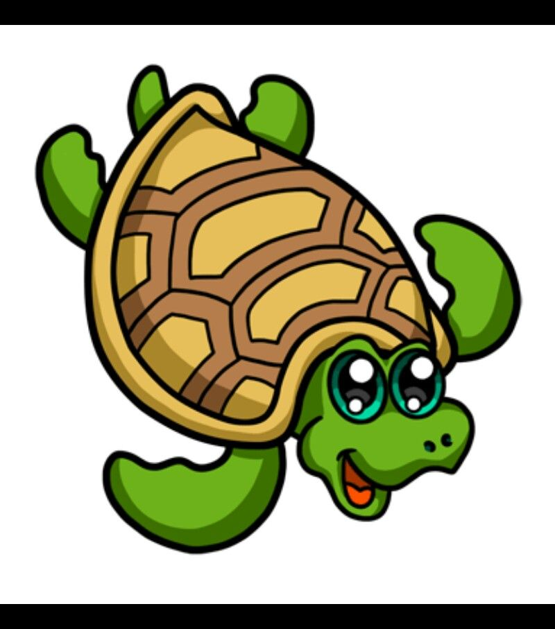 Turtie | Turtle drawing, Cute drawings, Anime animals