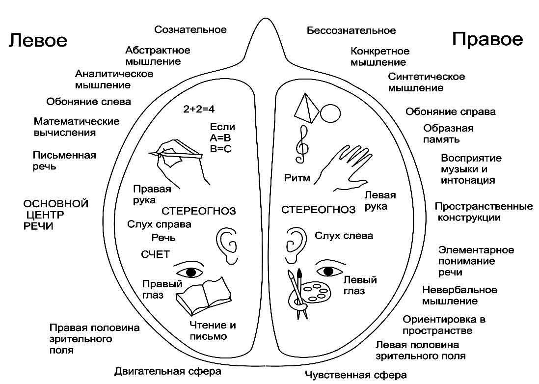Www.gramota.ru е.а.быстрова 5 класс готовые домашние задания
