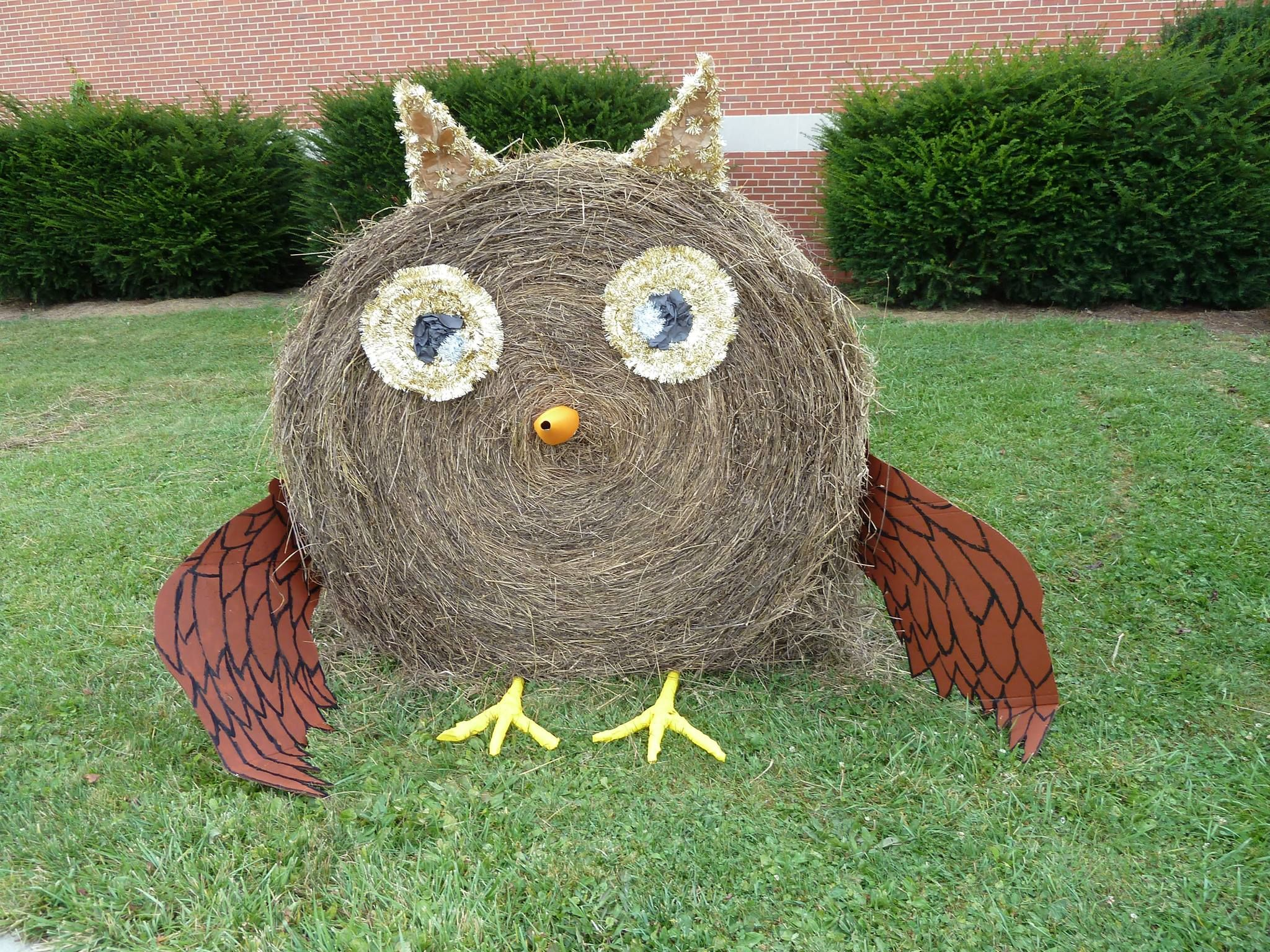 Hay Decoration Hay Bale Decor Owl Hay Bale Contest 2013