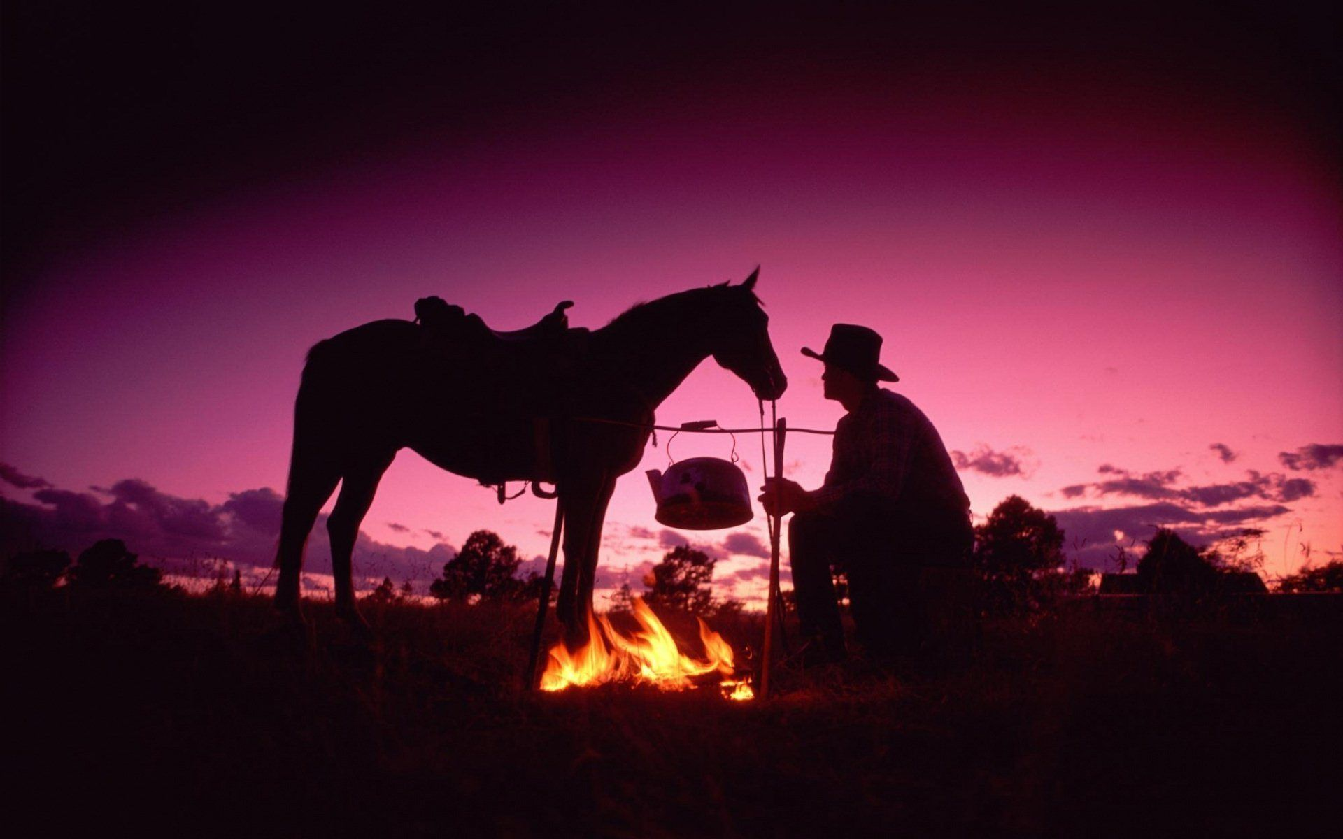 Looks Like One Of The Cowboys You D Meet At The Cowboy Poetry Gathering In Alpine Tx If You Haven T Gone You Need To Cowboy Horse Horses Cowboy Art