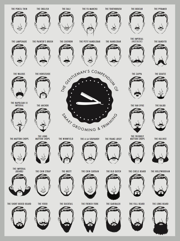 Beard Chart Poster Beard Chart Print Beard by theNATIONALanthem