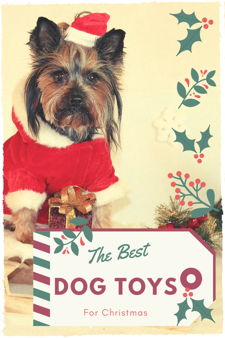 Top best dog toys for christmas make your dog happy all