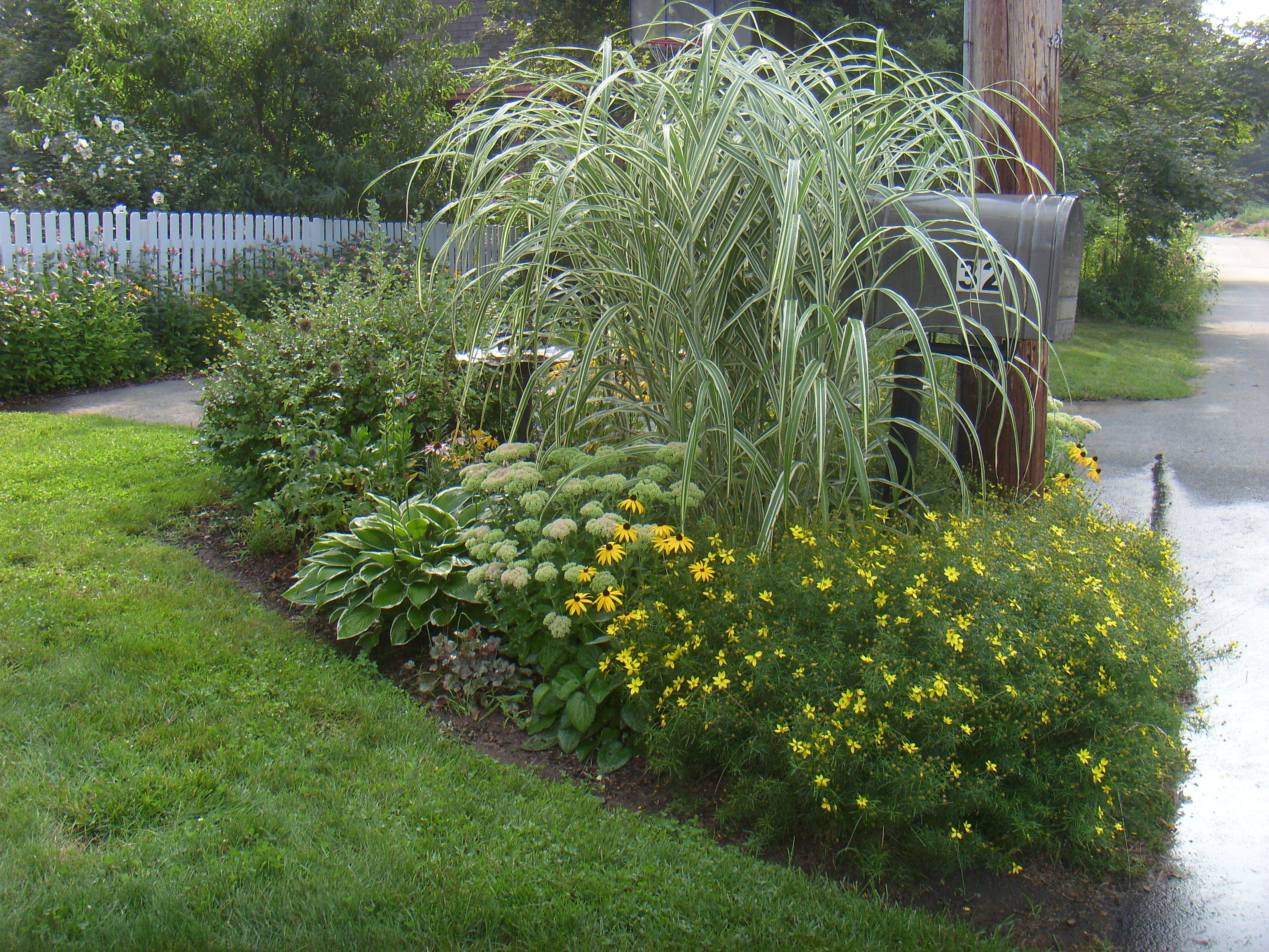 Mailbox garden end of summer ornamental grass to cover for Landscaping ideas using ornamental grasses