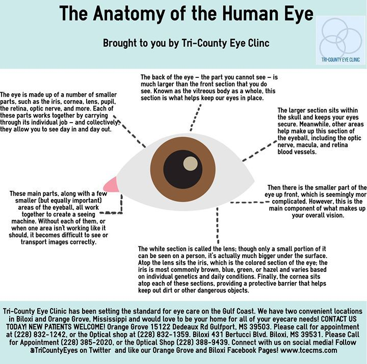 To Learn More About Your Eyes And How They Are Functioning Schedule