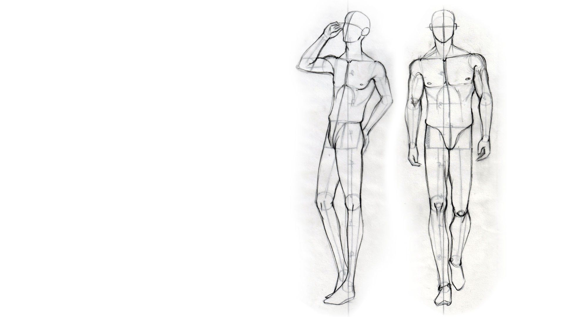 Male Fashion Figures: Step 3 (of 4): Drawing Muscles   Fashion ...