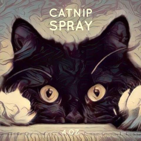 Catnip Spray (With images) Cat spray, Catnip, Cats meow
