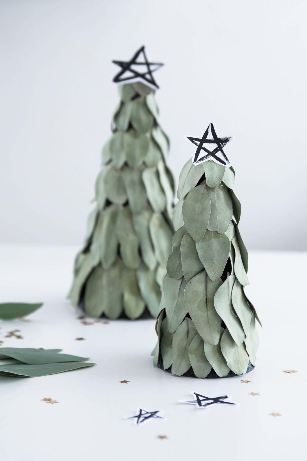 Kreativ adventskalender t rchen 17 eukalyptus b umchen x mas weihnachten noel - Weihnachtsstern dekorieren ...
