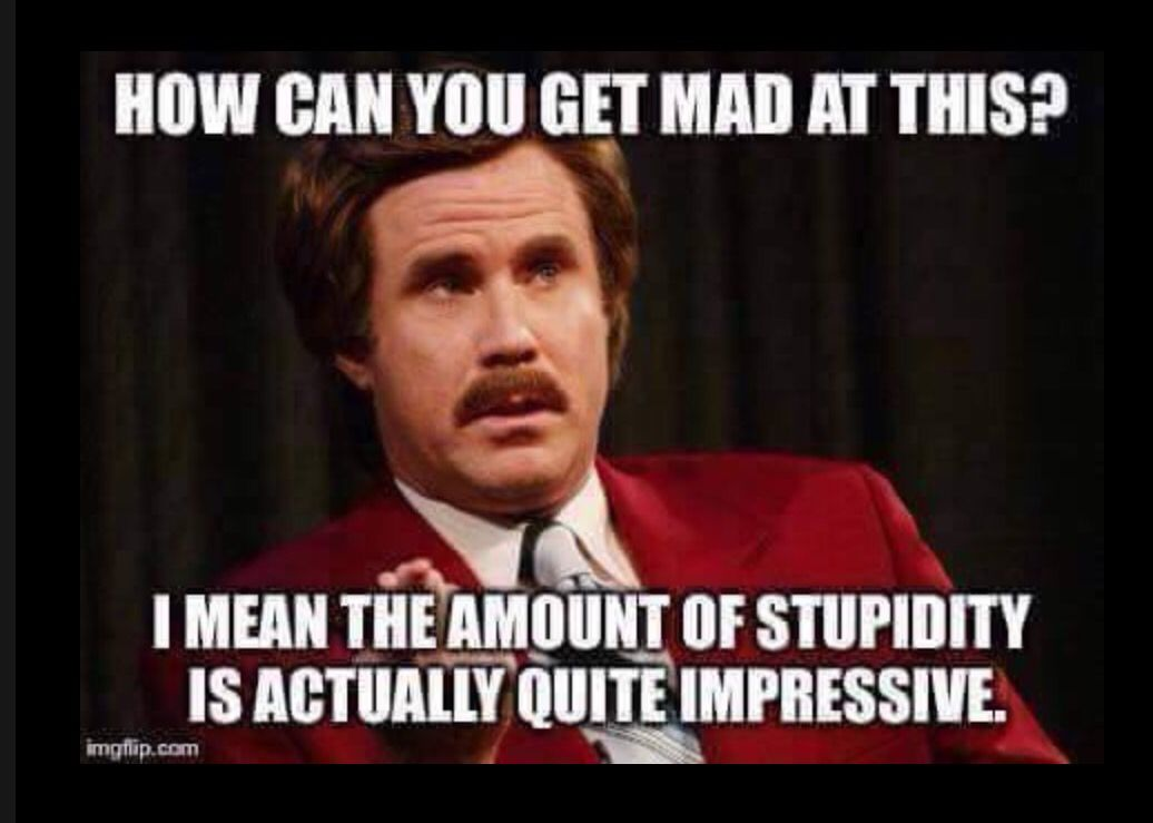 Funny Memes For Dumb People : My new way of thinking about dumb people who annoy the crap out of