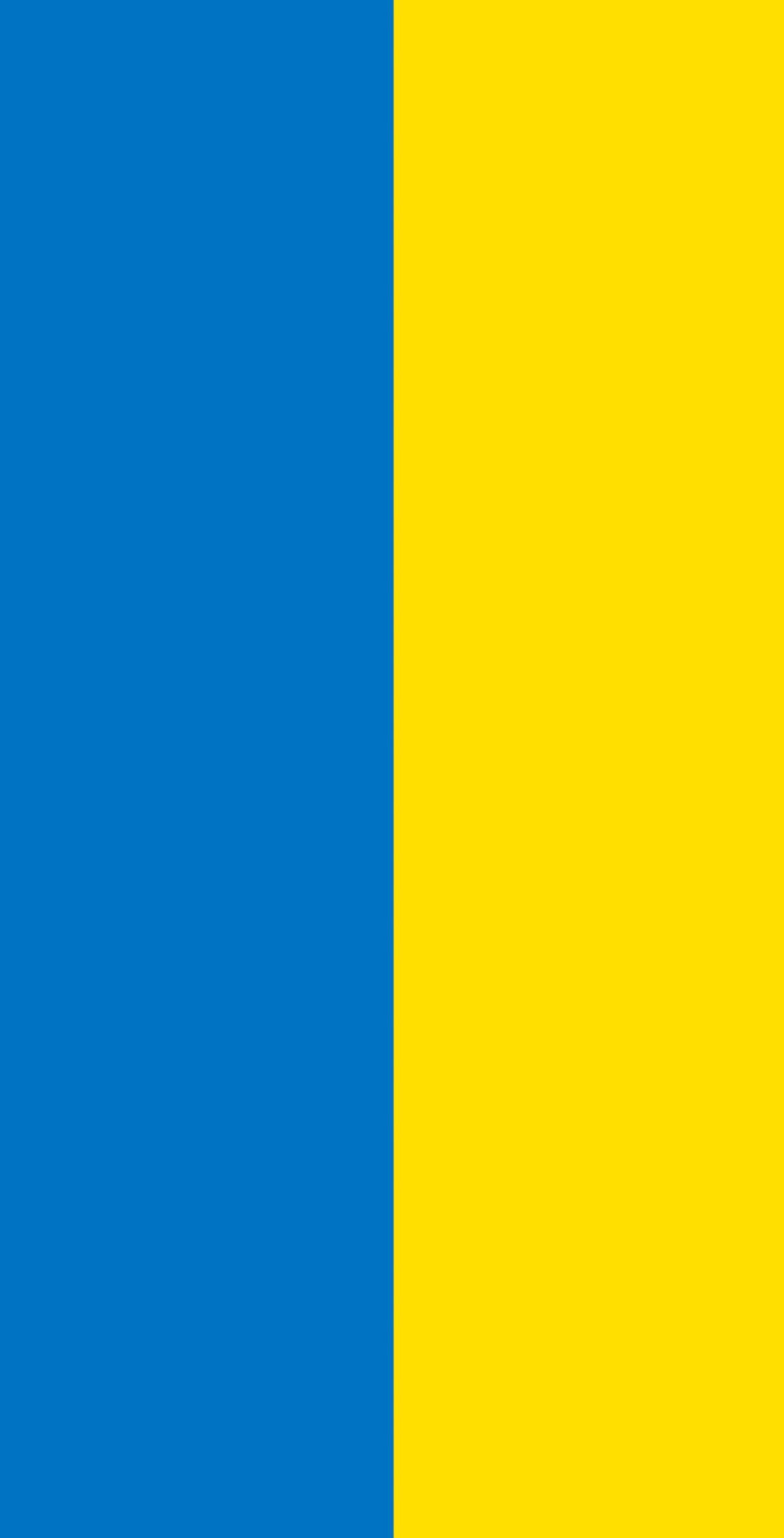 Ukraine Flag Themed 2x4 Custom Cornhole Board Set with bags | Custom Corn Hole | Bag Toss | Corn Toss | Bean Bag Toss