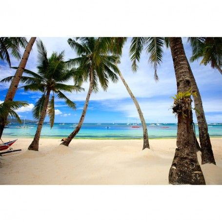 Perfect Tropical Beach with Palm Trees Wall Mural 5699 http