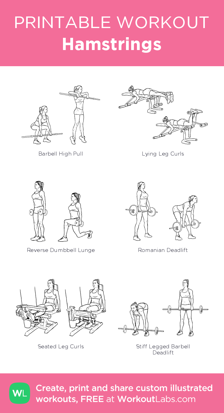 Hamstrings: my visual workout created at WorkoutLabs.com ...