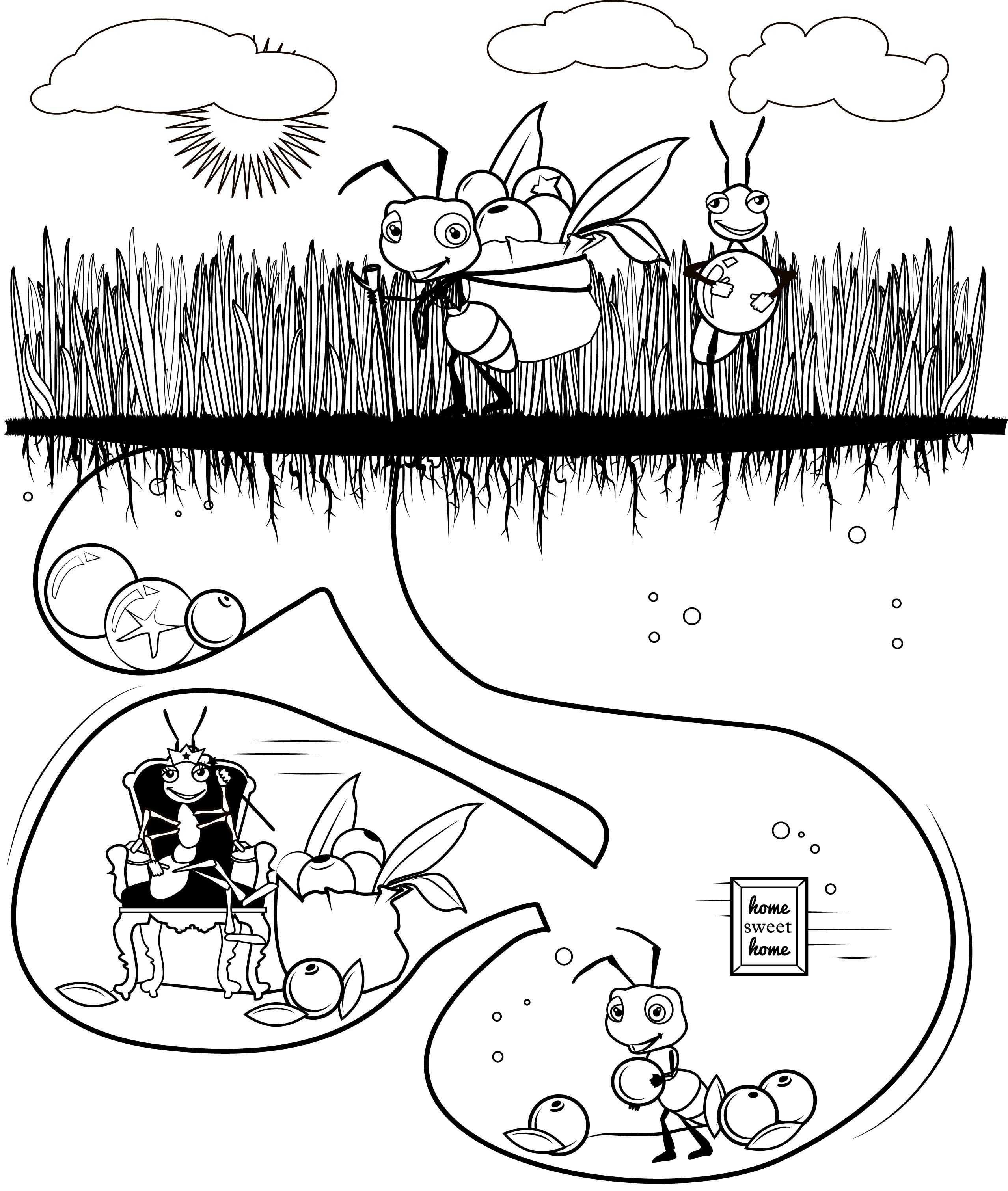 ant coloring sheet - focus group ant day   Garden Creative Arts ...