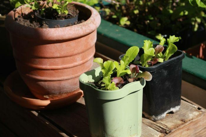 awesome bio garten balkon gestalten ideen pflanzen Check more at - Kleine Küche Einrichten Tipps