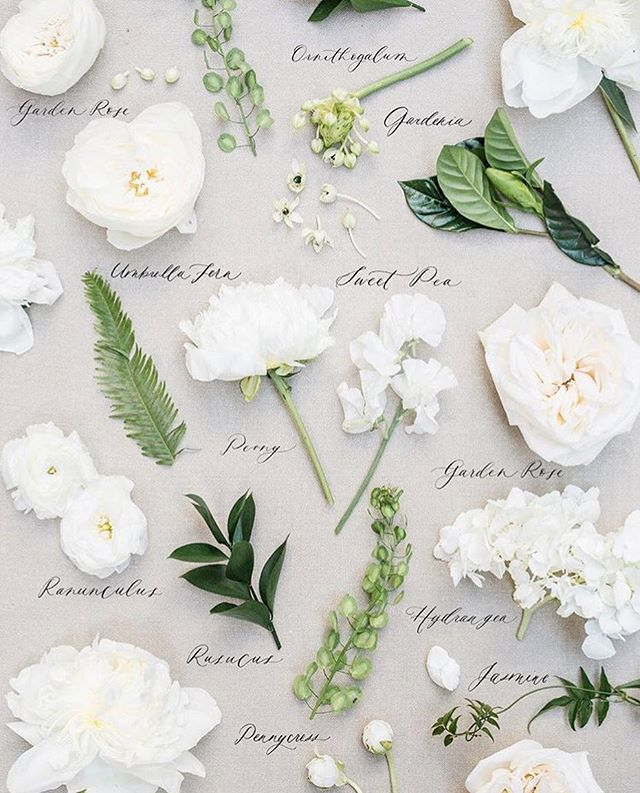 Bloomspiration Collaboration With Theheirloombouquet Wedding Flower Types White Wedding Flowers Fake Flowers