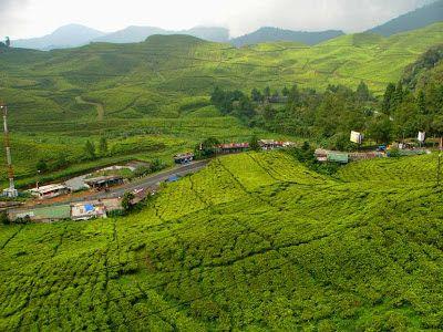 5 Tempat Wisata Di Bogor Yang Terkenal Pemandangan Foto Wisata Kota Bogor