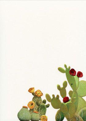 Cactus Garden II | Displate thumbnail