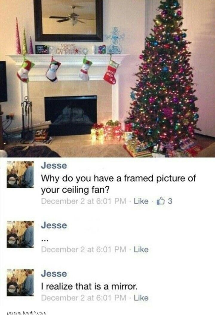 thefloop   bless   Pinterest   Funny, Hilarious and Lol