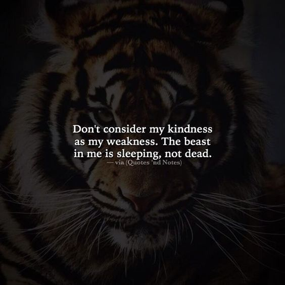 Don T Take My Kindness For Weakness Quotes: Don't Consider My Kindness As My Weakness Life Quotes