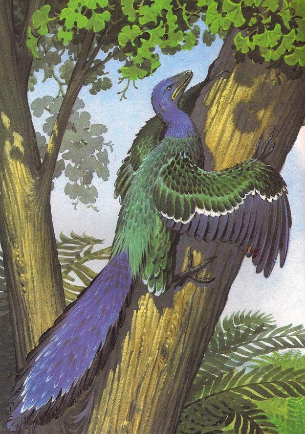 весь искромсан картинка птицы археоптерикс приколами