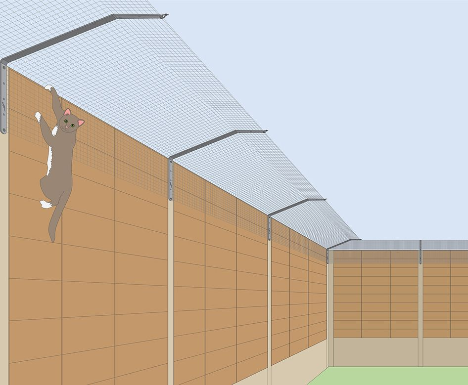 Cat fencing made for cat safety and cat owner peace of