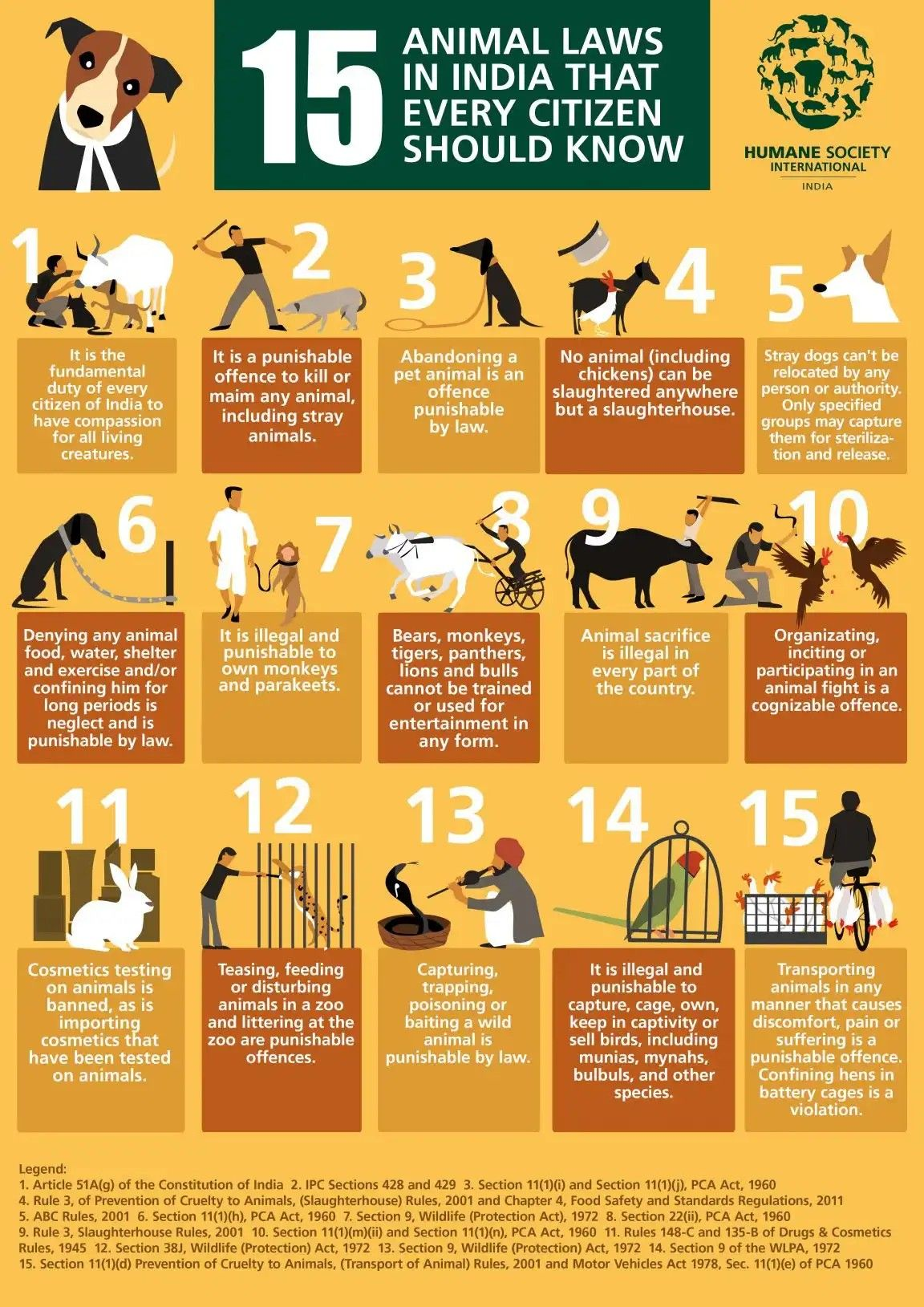 Pin By Thushara On Dogs Animal Law Animal Slaughter Pet Day