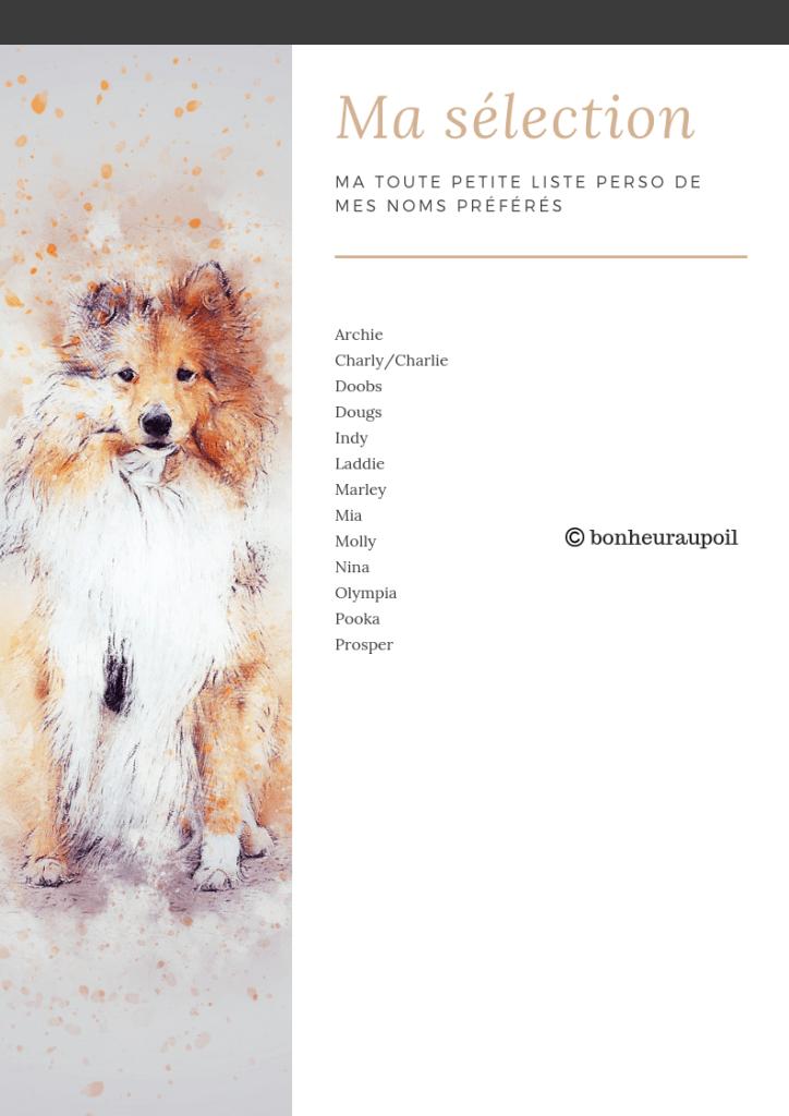 Prenom De Chien En P : prenom, chien, Chiens, Bonheur, Chien,, Chien, Femelle,, Dresser