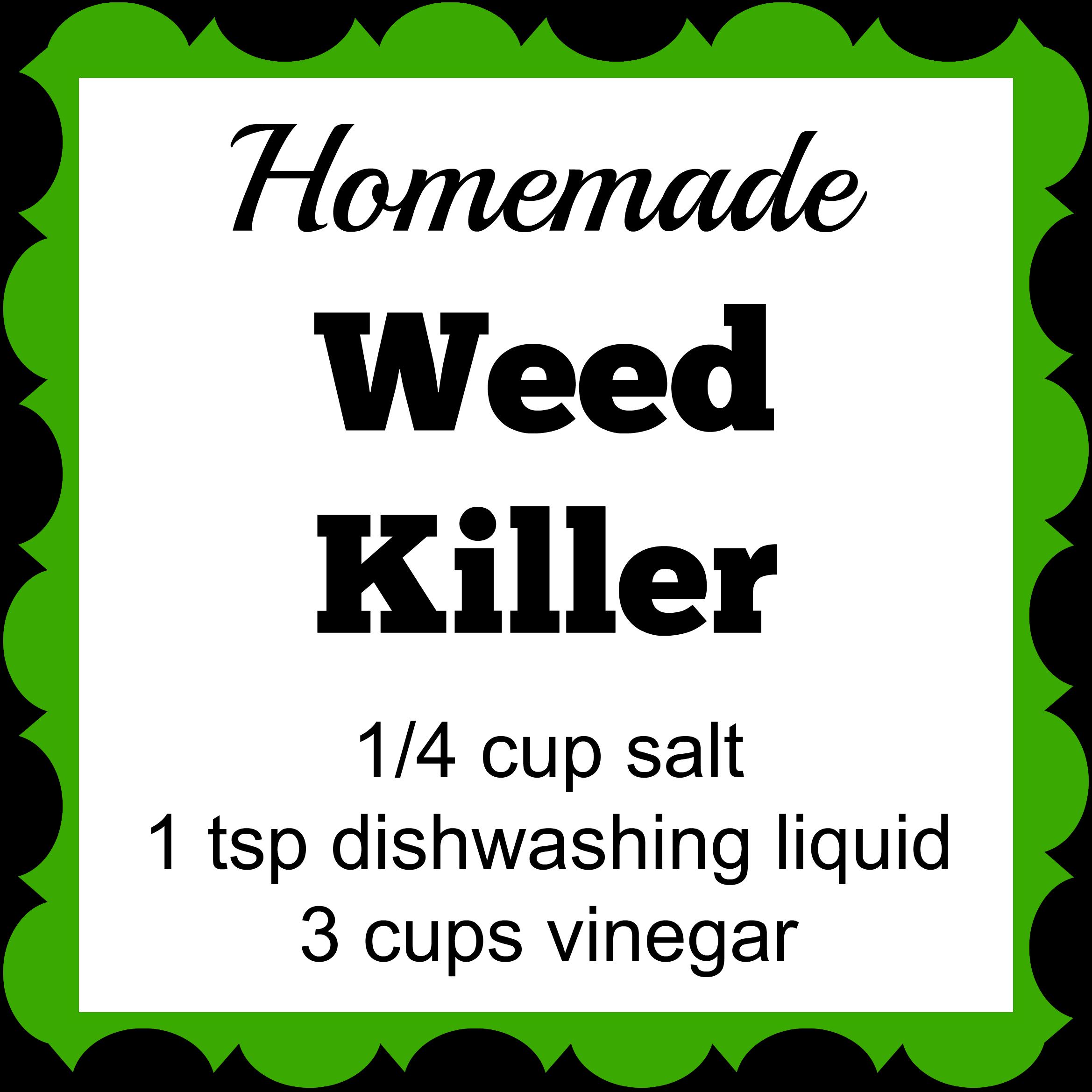 Weeds in flower beds organic killer - Homemade Weed Killer