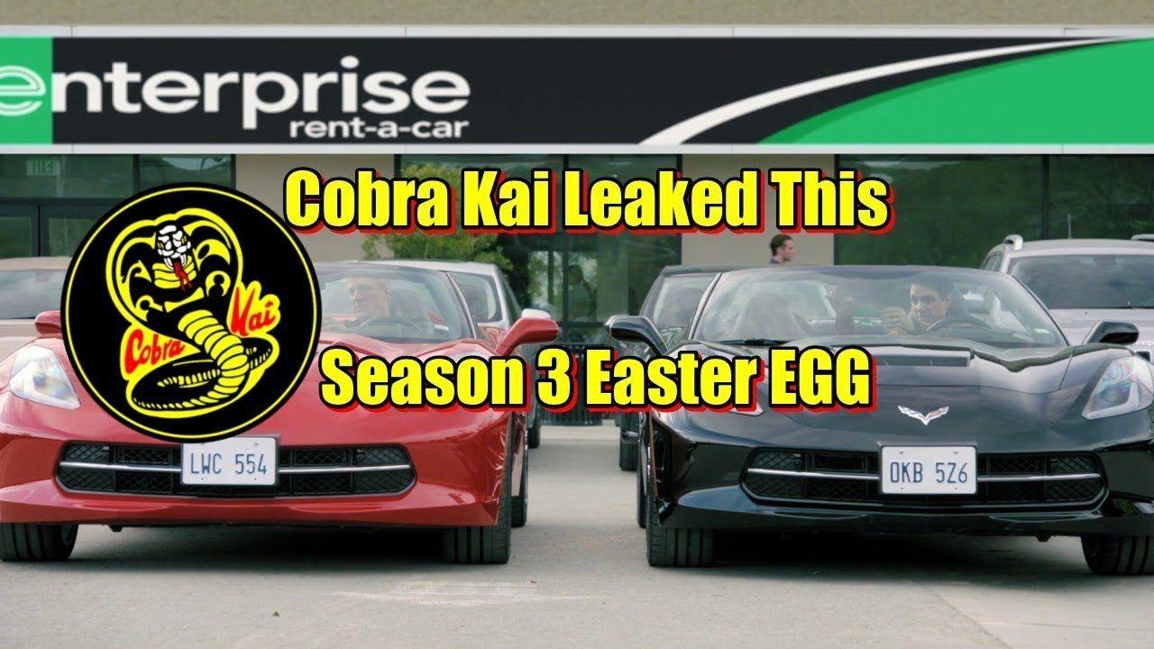 Cobra Kai Season 3 Easter Egg Johnny and Daniel Team Up