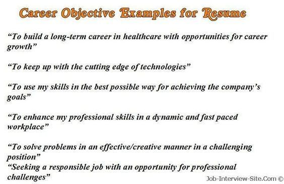 Sample Career Objectives \u2013 Examples for Resumes Resume examples
