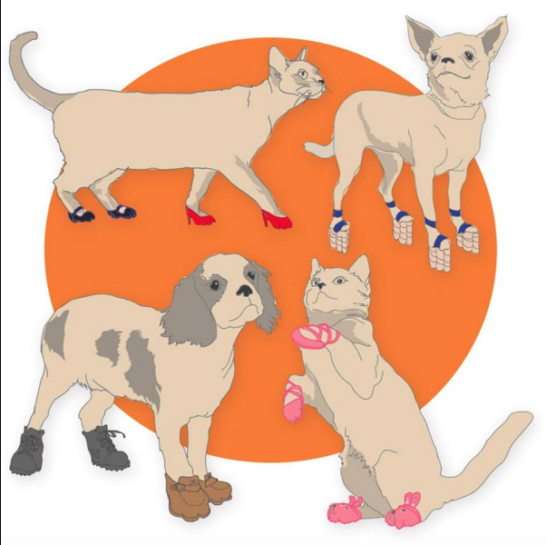 On The Heels Of Our Announcement About The New Bobs From Skechers Best Friends Animal Society Collection We Re Thrilled To Pet Adoption Animal Society Pets