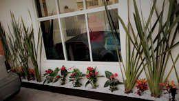 PUNTA NORTE: Jardines de estilo moderno por H+R ARQUITECTOS https://www.homify.com.mx/libros_de_ideas/3259920/17-ideas-para-tener-un-jardin-pequeno-en-casa