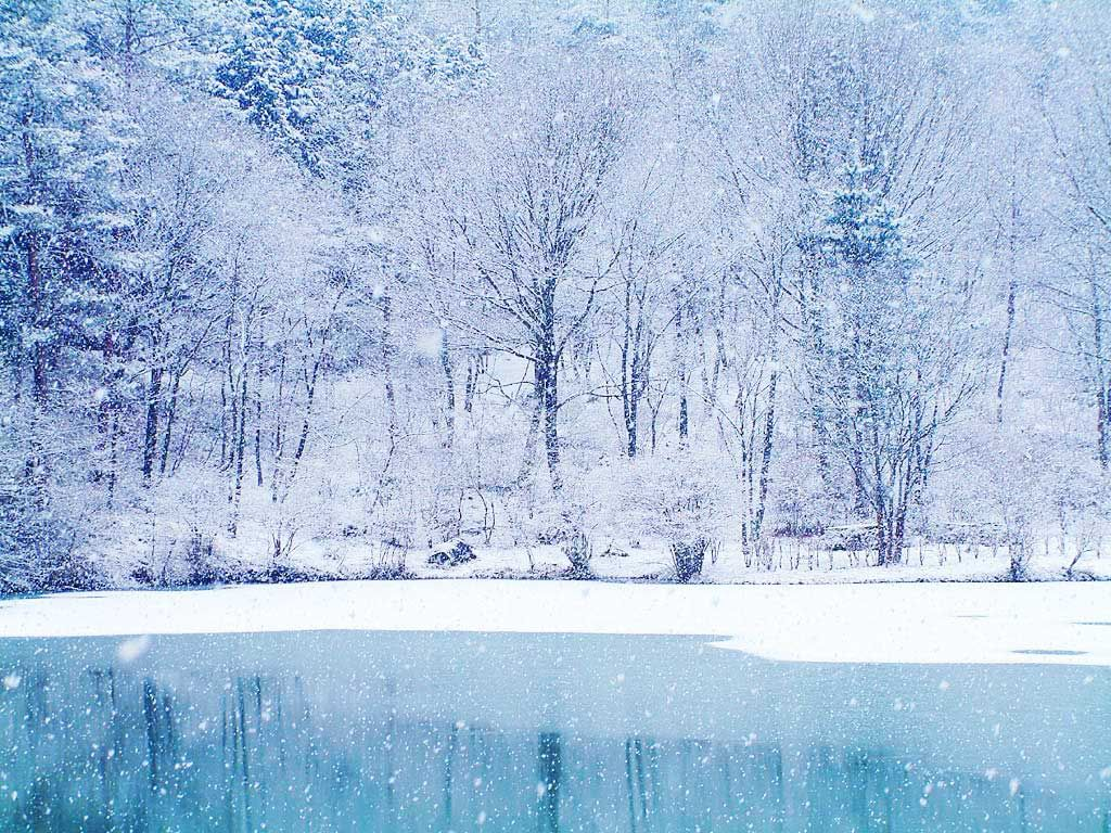 Wallpaper Download Snowy Wallpapers Wallpaper Winter Wallpaper Winter Wonderland Wallpaper Winter Wallpaper Winter Scenery