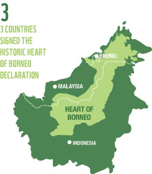 Pity, that asian rainforest map apologise
