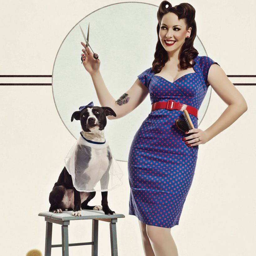 Pin Up Girl Salon: Dog Grooming Salons